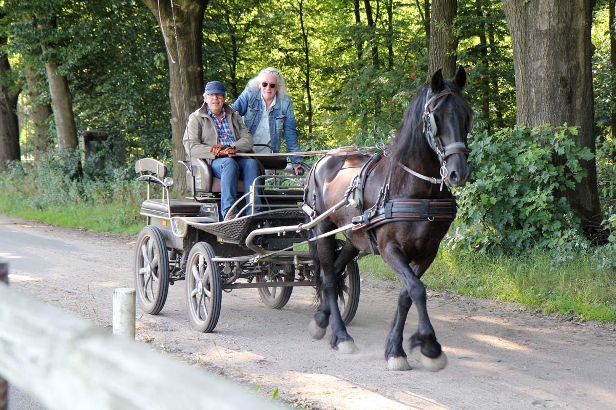 Vakantiehuisje-Veluwe-Paard-Ede-027