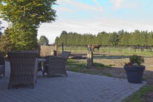 Overnachten met paard, paardrijden veluwe, overnachten met paard, vakantiehuisje Veluwe, bed en stal, veluwe trail te paard, paardenaccomodatie, ruitervakantie Nederland